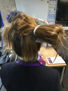 Wild Hair Day  2